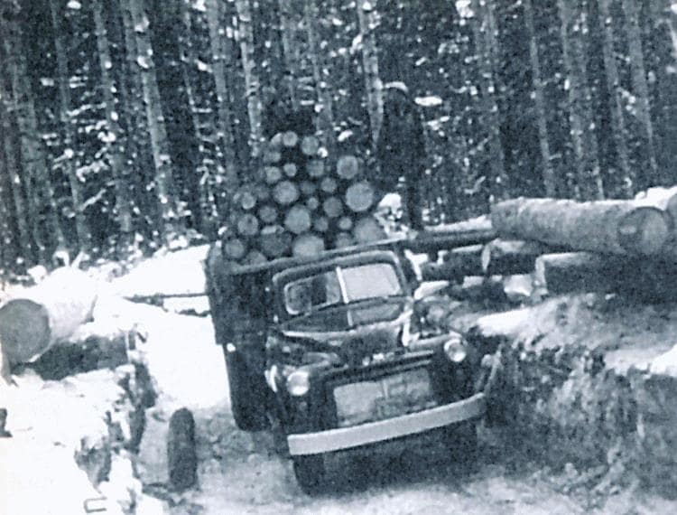 Logging with skidders.