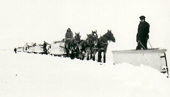 Front view of snowplough on Coffield's freight swing, Melvin Egeland driving his father's horses. Photograph taken in 1940.