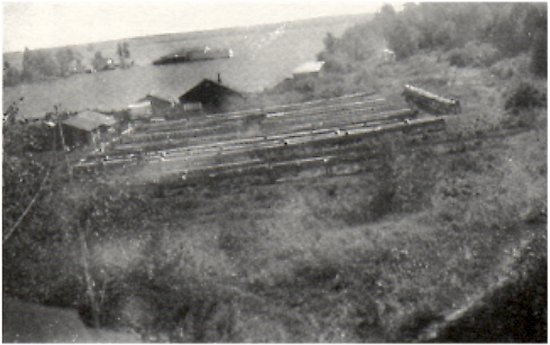 Harold Viden's mink ranch at Murry's Point.<br> Waite's plant in the background.